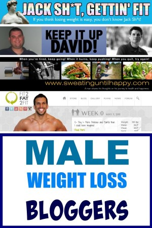 male weight loss bloggers