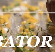 Chobani Launches Food Incubator