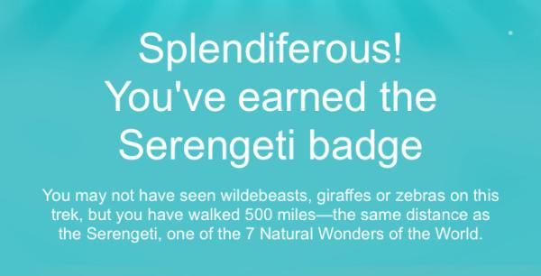 new fitbit badge - serengeti badge