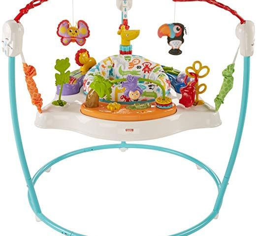 Fisher Price Activity Jumperoo Baby Bouncer Review