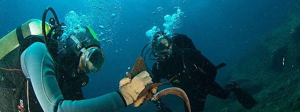 Potápění na Sardínii