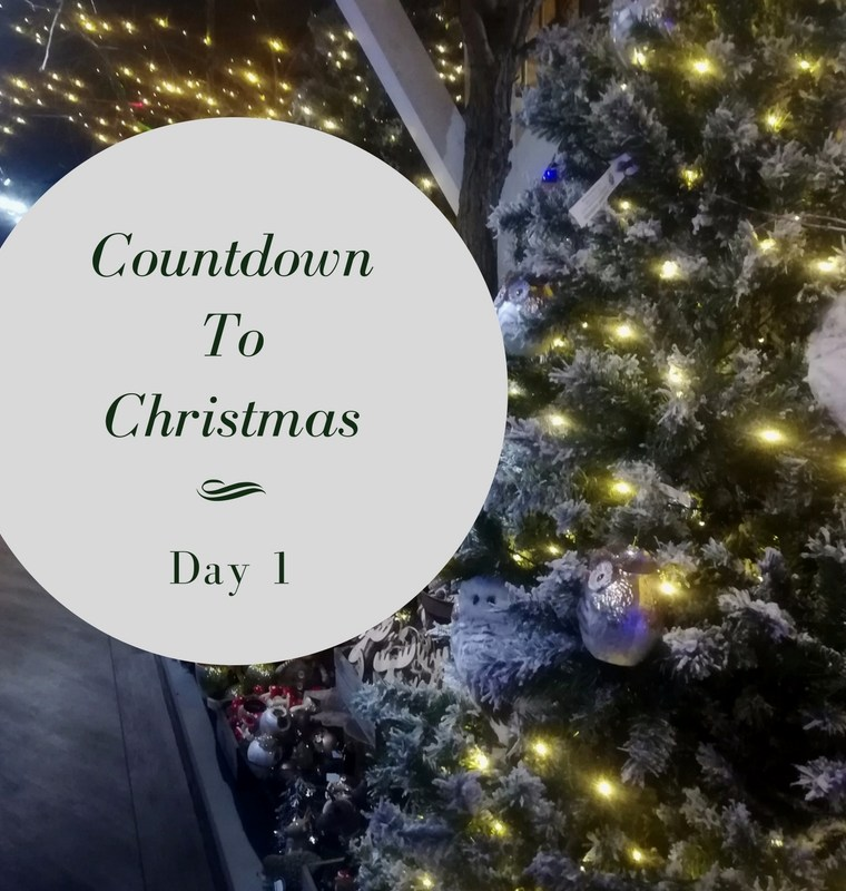 Countdown to Christmas || Day 1 || A Mess In A Dress