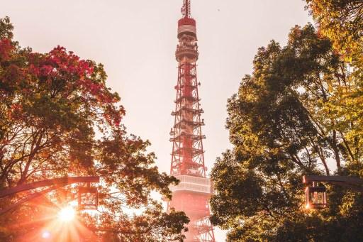 Япония, Токийская телебашня летом