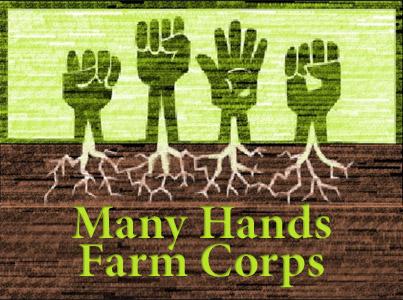 manyhands_logo1