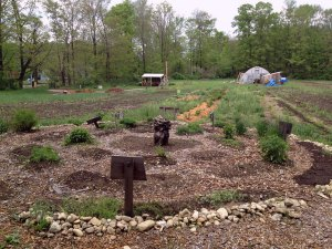 Photo of permaculture herb garden at Many Hands CSA