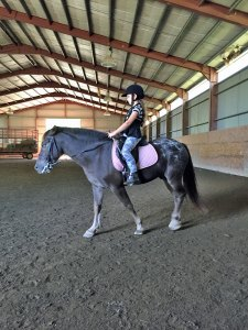 Photo of a young girl riding a horse in the Riding Barn at Amethyst Farm