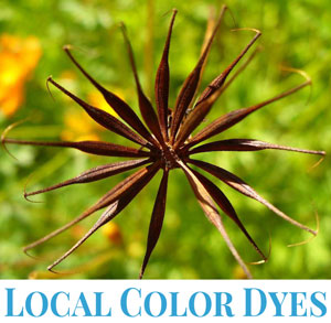 Logo for Local Color Dyes