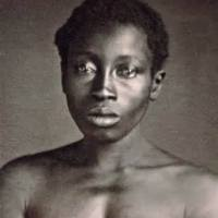 Black History | Breeding American Slaves