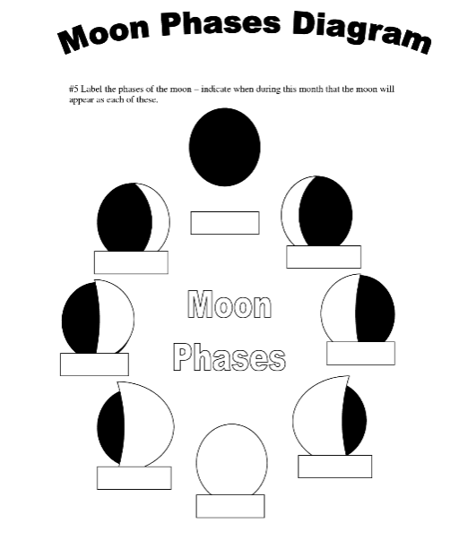"""Search Results for """"Phases Of The Moon Worksheet"""