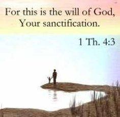 97c752cfb303d1c031c14f2e46efc90a--one-year-bible-the-bible