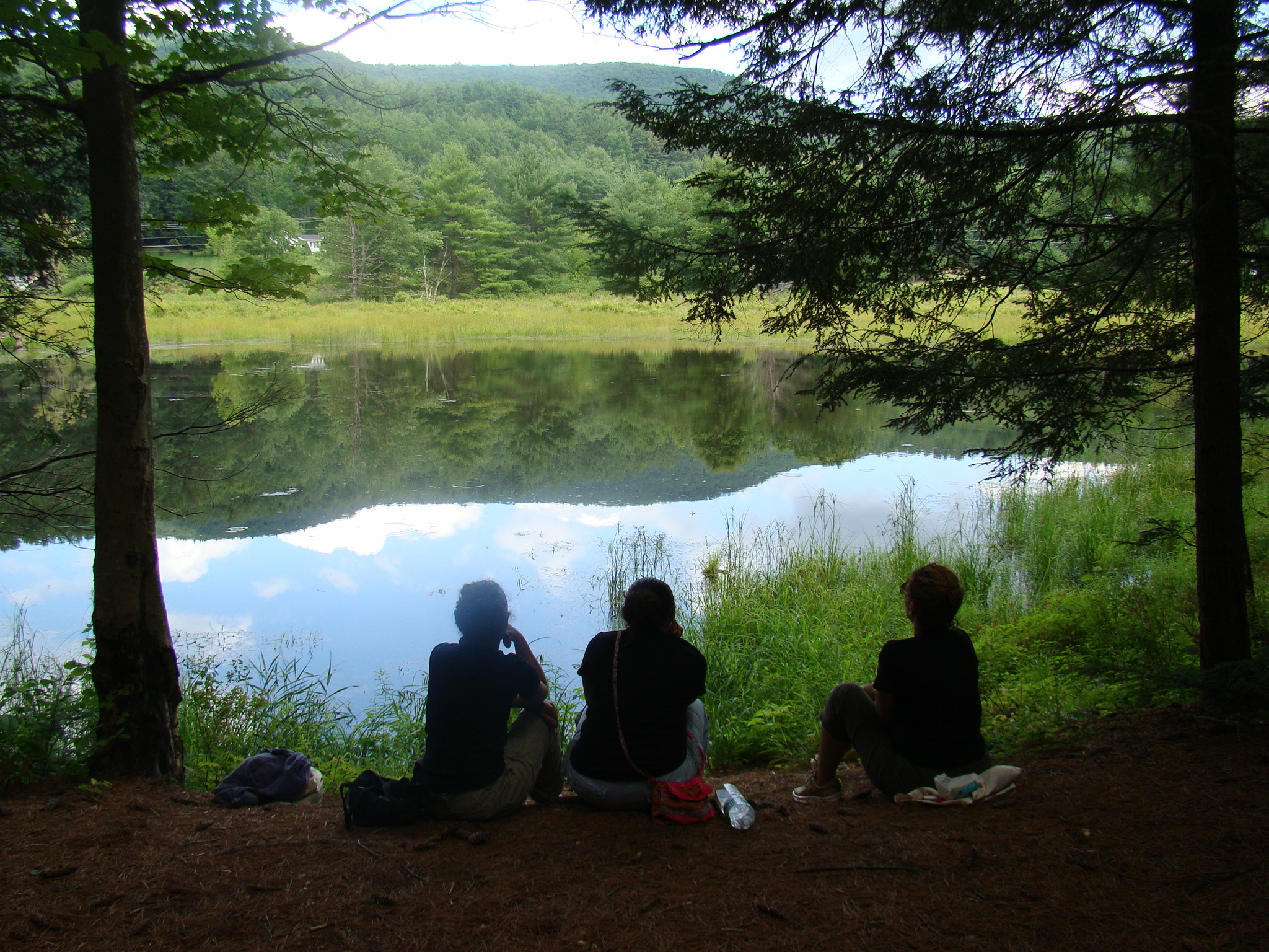 Taking a break on our hike by beaver pond- the frogs were talking to us:)