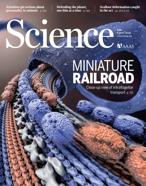 Science Magazine Covers