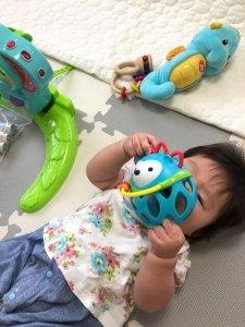 トイサブ!で3か月に届いたおもちゃ