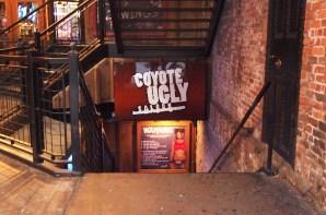 Sakáltanya nem csak New Yorkban van :)