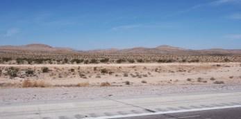 Már az interstate-en sem volt megszokott a látvány