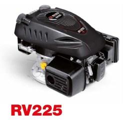 Motore a Benzina 4 Tempi Rato RV225