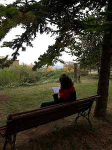 Natura & Espiritualitat: la tardor