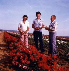 Jordi, Albert i Simó als camps de conreu de Moja, Alt Penedès, dècada anys 1960. Foto: arxiu família Dot.