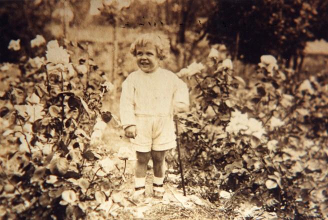 Simó Dot al roserar de Torreblanca, 1918.Foto: Foto arxiu família Dot.