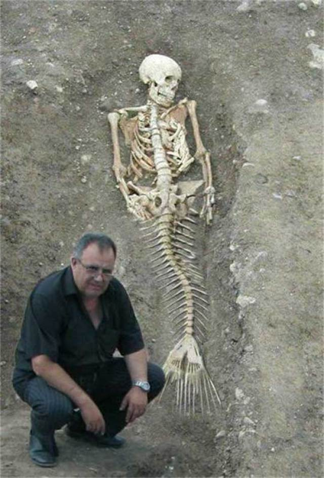 mermaid24