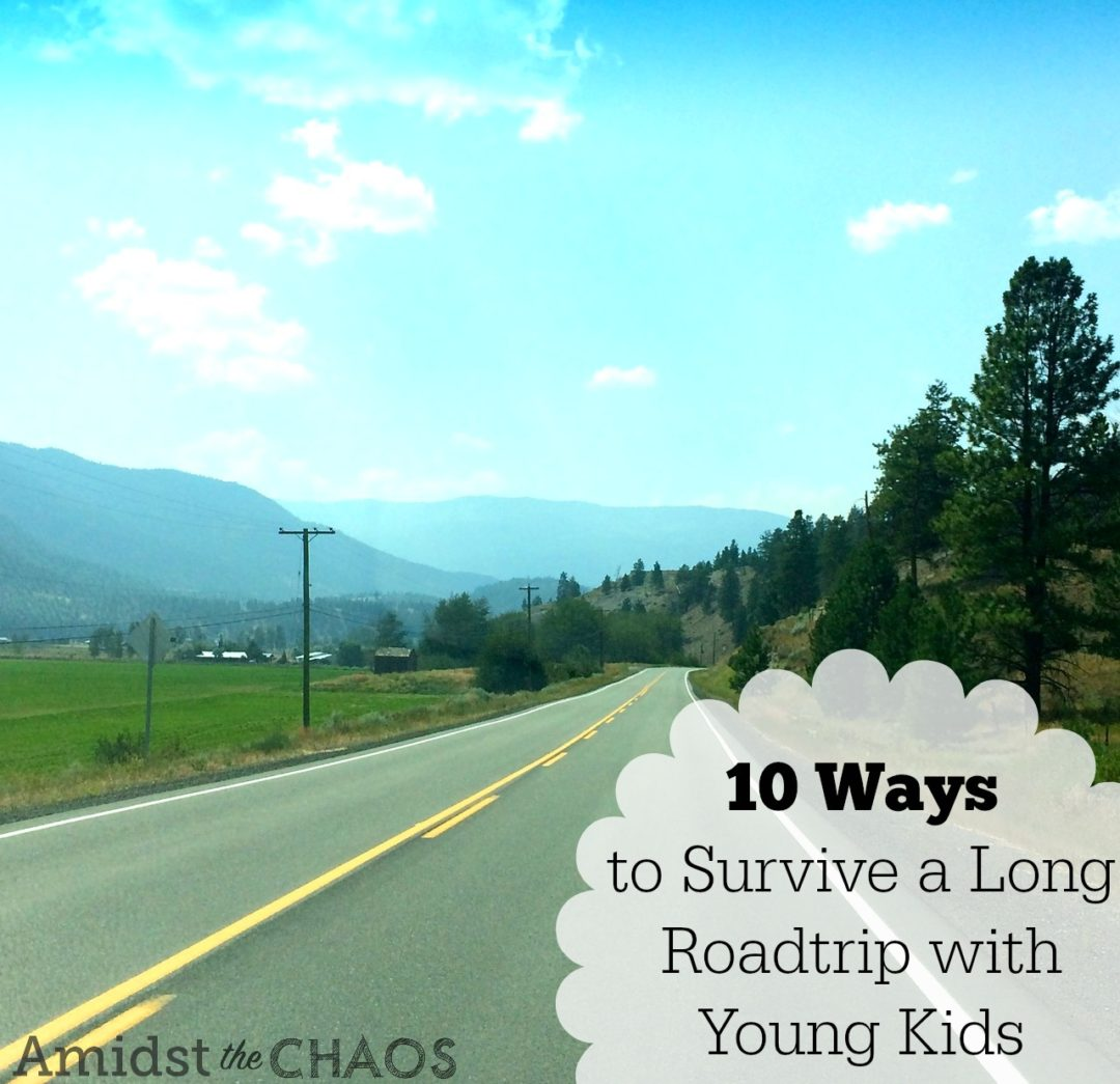 10 Ways To Survive A Long Road Trip With Young Kids