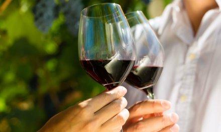 Mito ou verdade: vinho faz bem à saúde?