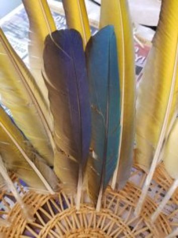 feather wall art second row guide amigas4all