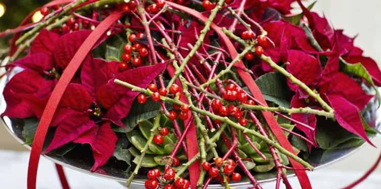 Taller de arte floral navideño