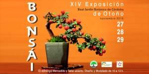 XIV Exposición de Bonsáis Jardín Botánico Córdoba
