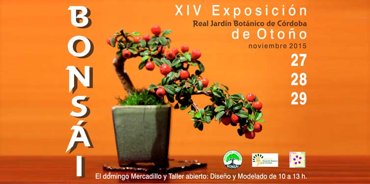 XIV Exposición de Bonsáis de otoño