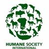 Humane society international logo_resized