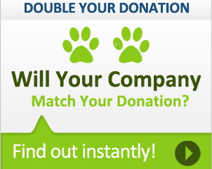 Important read for donors: Double your Donation!
