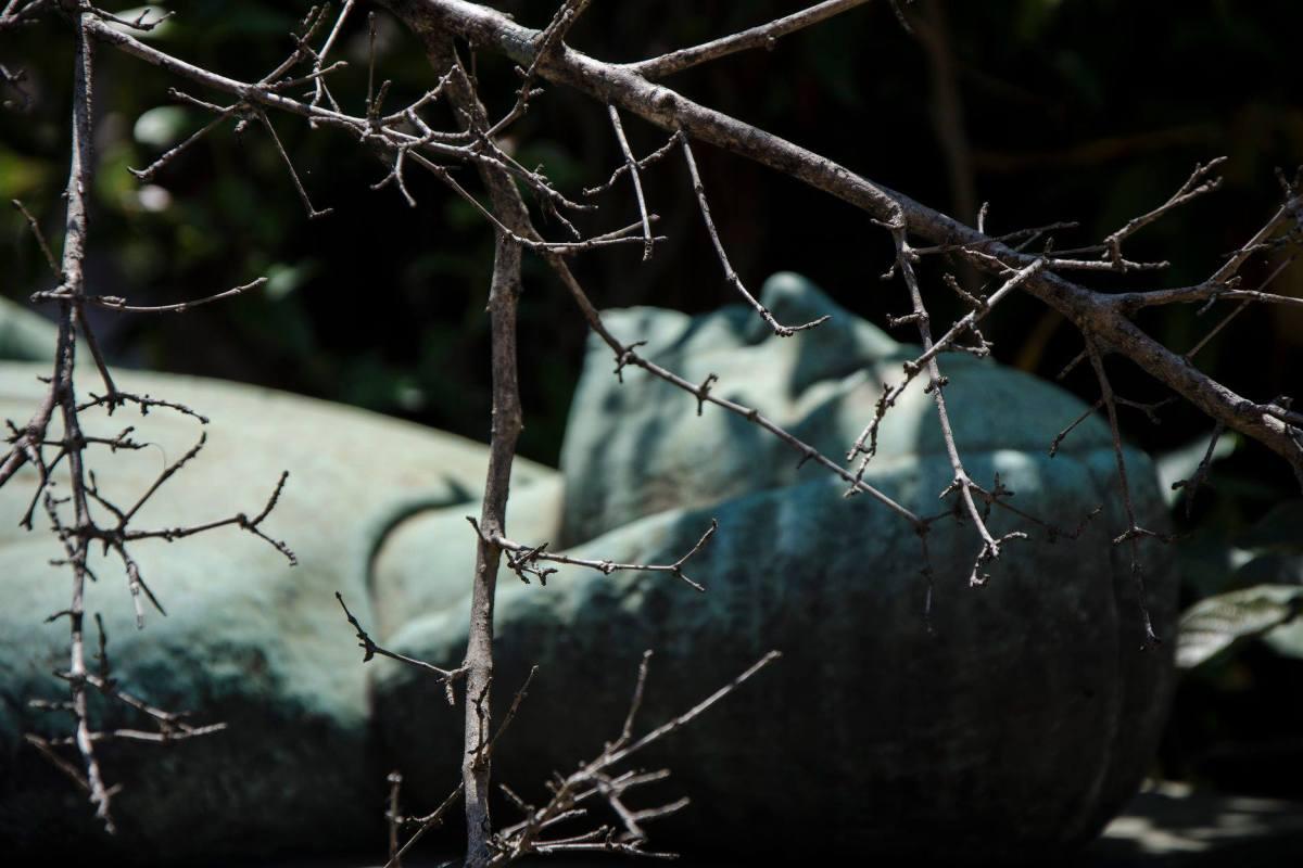 Passeando por cemitérios. Por Eduardo Affonso