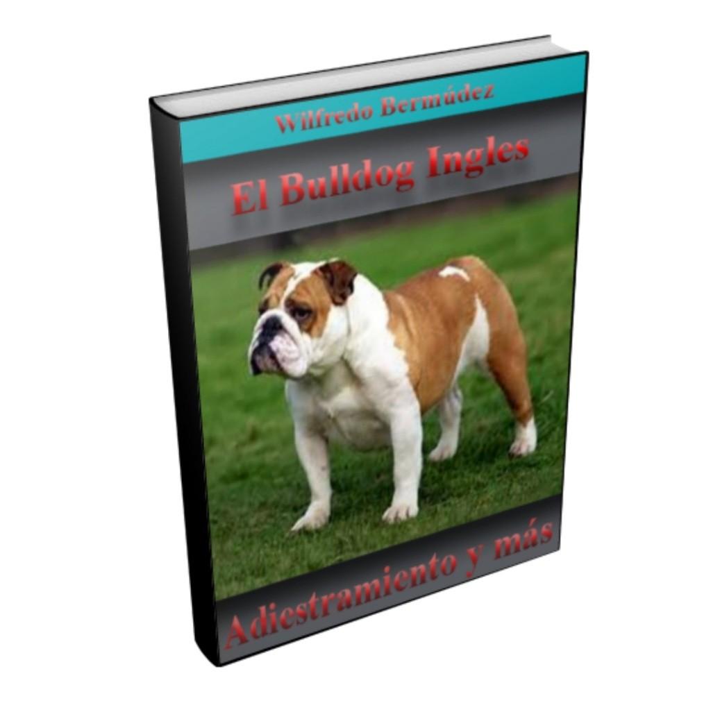 Adiestramiento Bulldog Inglés