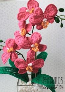Orquideas jarron