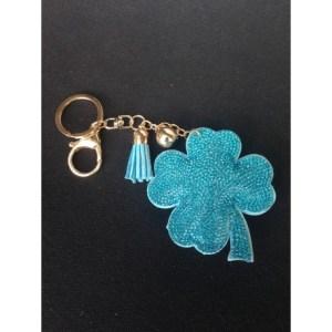 Lucky key door turquoise