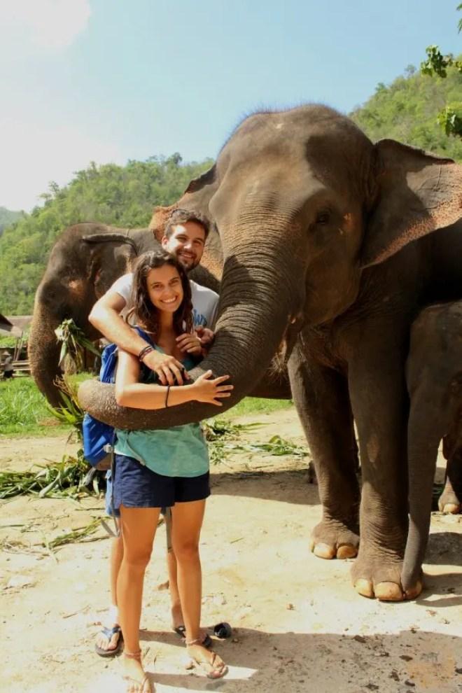 Elefanti, Chiang Mai