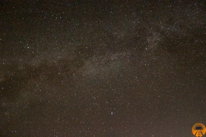 stelle bohol cosa vedere