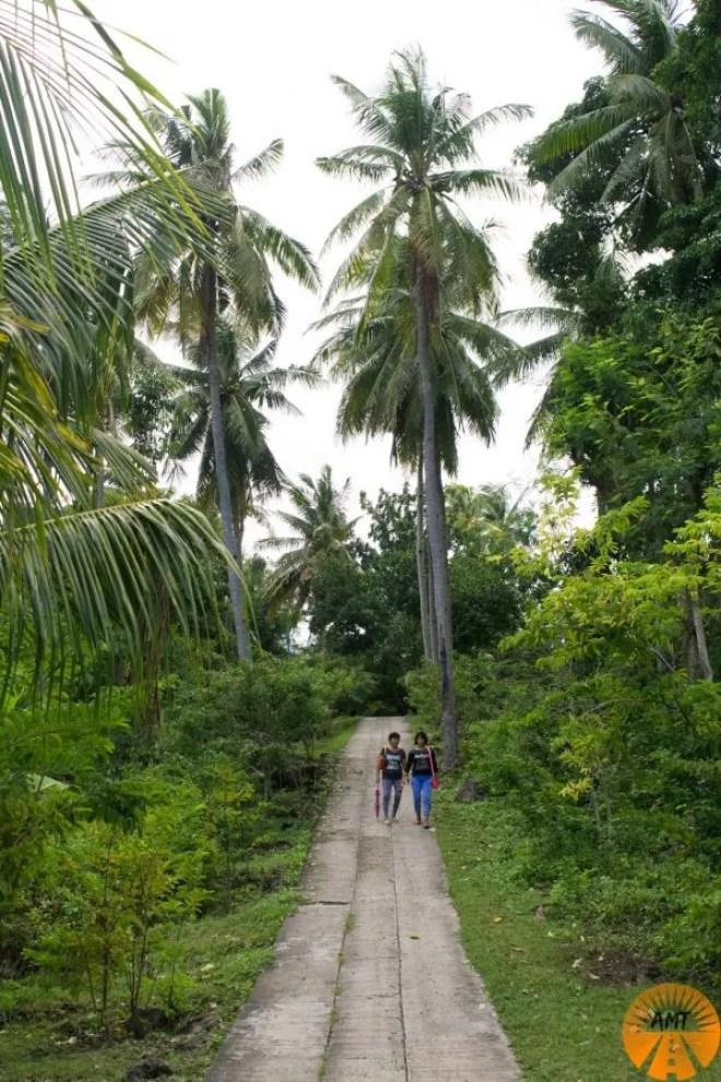 Bohol island activity where