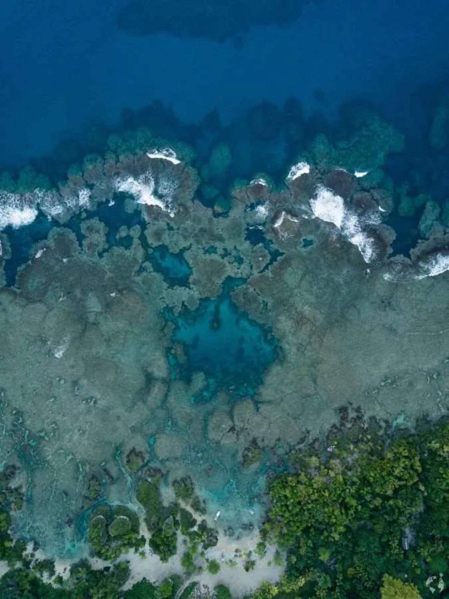 White Grass Resort - sea drone photo