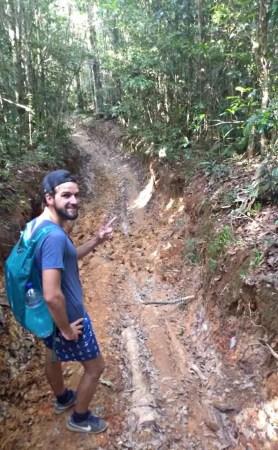 windin falls trail track