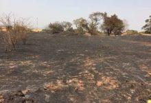 Incendie du cimetière de Pounthioun-les faits vus du premier responsable du quartier