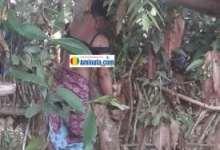 Fatoumata Binta Baldé retrouvée pendue