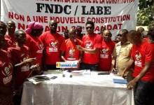 Des membres de l'antenne locale Labé du Front national pour la défense de la constitution (FNDC)