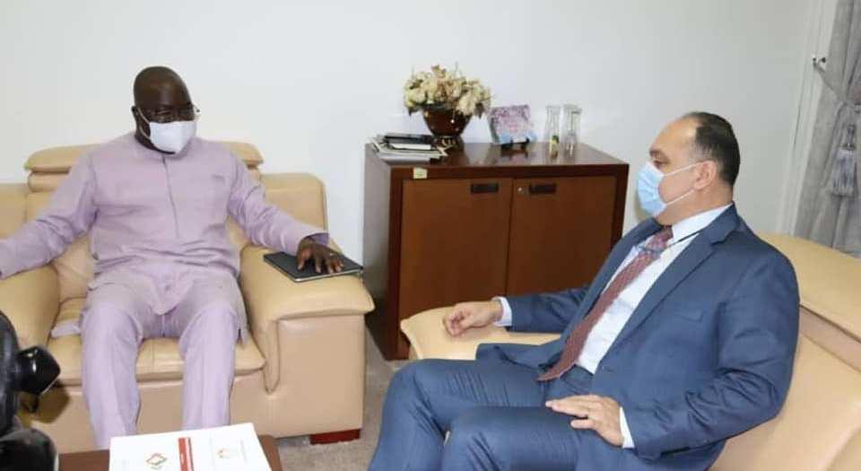 Guinée - Égypte Le suivi des décisions