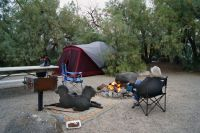 Campground at Furnace Creek, Death Valley, NP - Sport ...