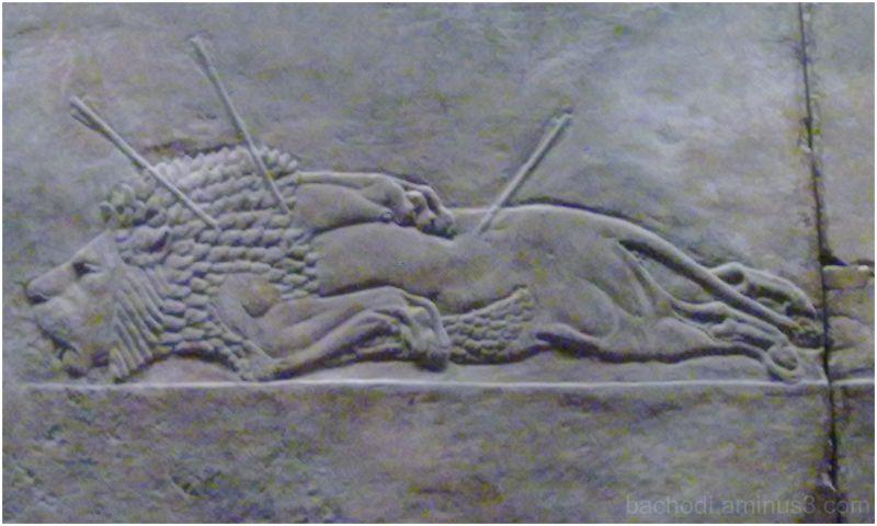 damn you! Assyrian hunter!