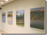 Water and Trees exhibition at The Studio