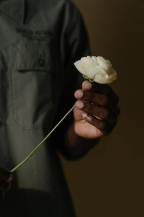 person-holding-white-rose-flower-4277093