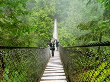 February - I finally got to Canada and enjoyed the Lynn Canyon park and suspension bridge immensly!